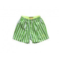 SUMMER STRIPE PANTS (GREEN)